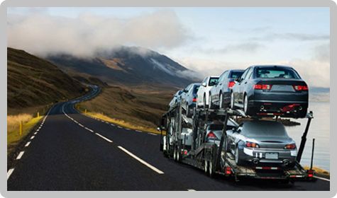 Vehicle Shipping Quotes Captivating Auto Carriers  Auto Shipping Quotes  Call 8662211664